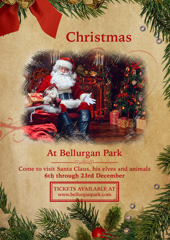 Bellurgan Christmas 19